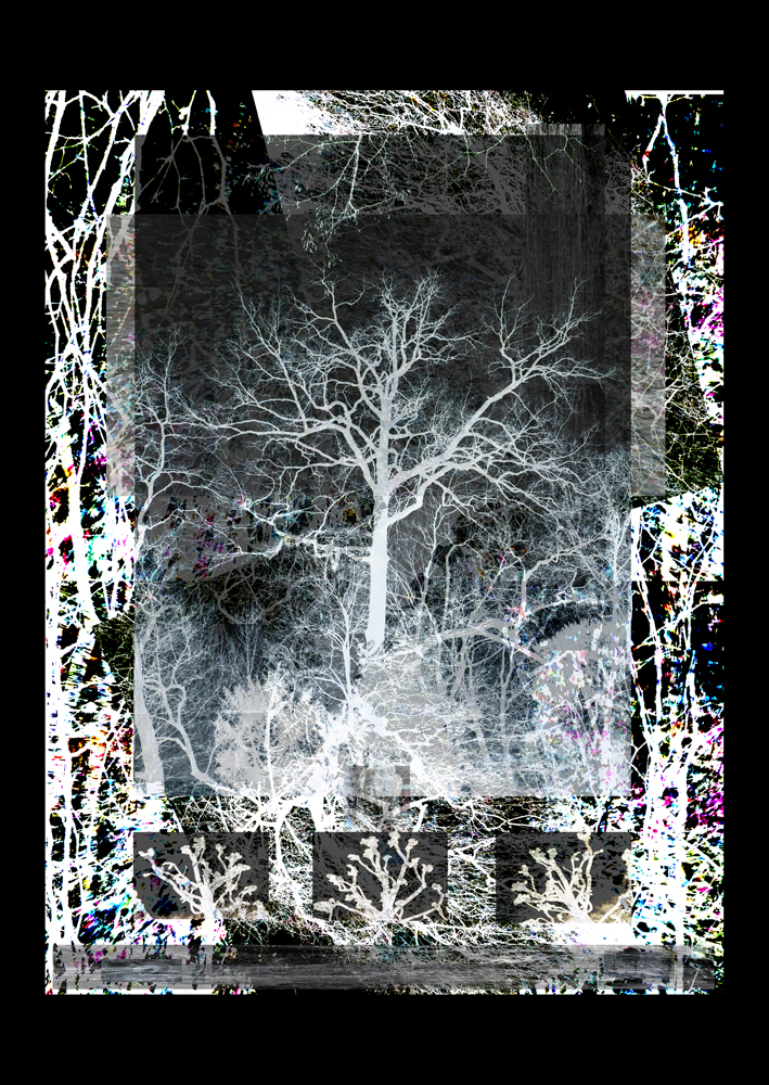 "Bertrand Alberge - plasticien - photomontage - ""Mercredi 17 février"""