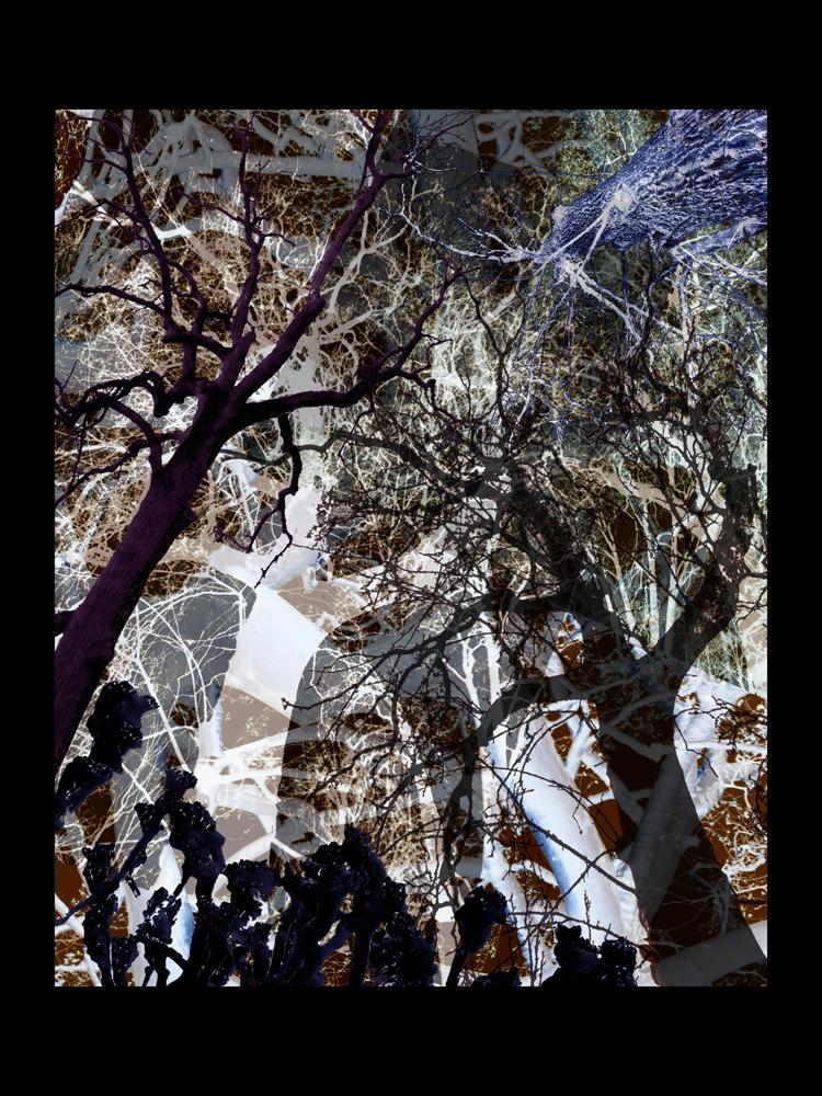 "Bertrand Alberge - plasticien - photomontage - ""Vendredi 26 février"""