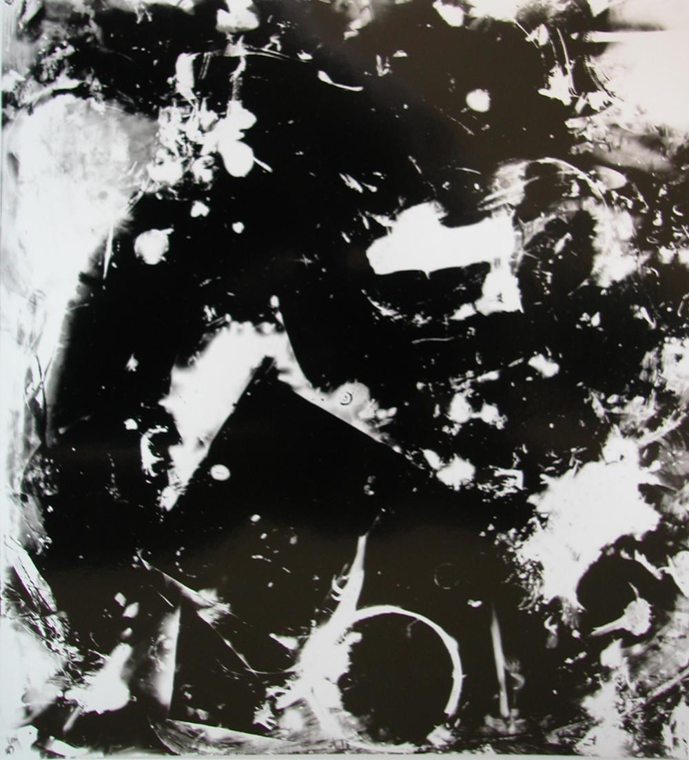 Bertrand Alberge - plasticien - photogramme - repas photogrammique