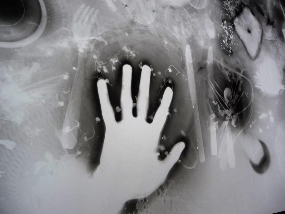 Bertrand Alberge - plasticien - photogramme - repas photogrammique - détails